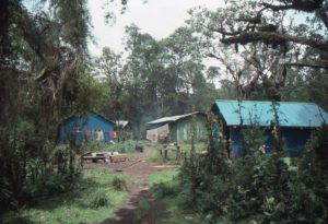 25.22.05 Karisoke Research Centre in 1991, 10,000ft, Volanoes NP, Rwanda. Ian Redmond 293.14